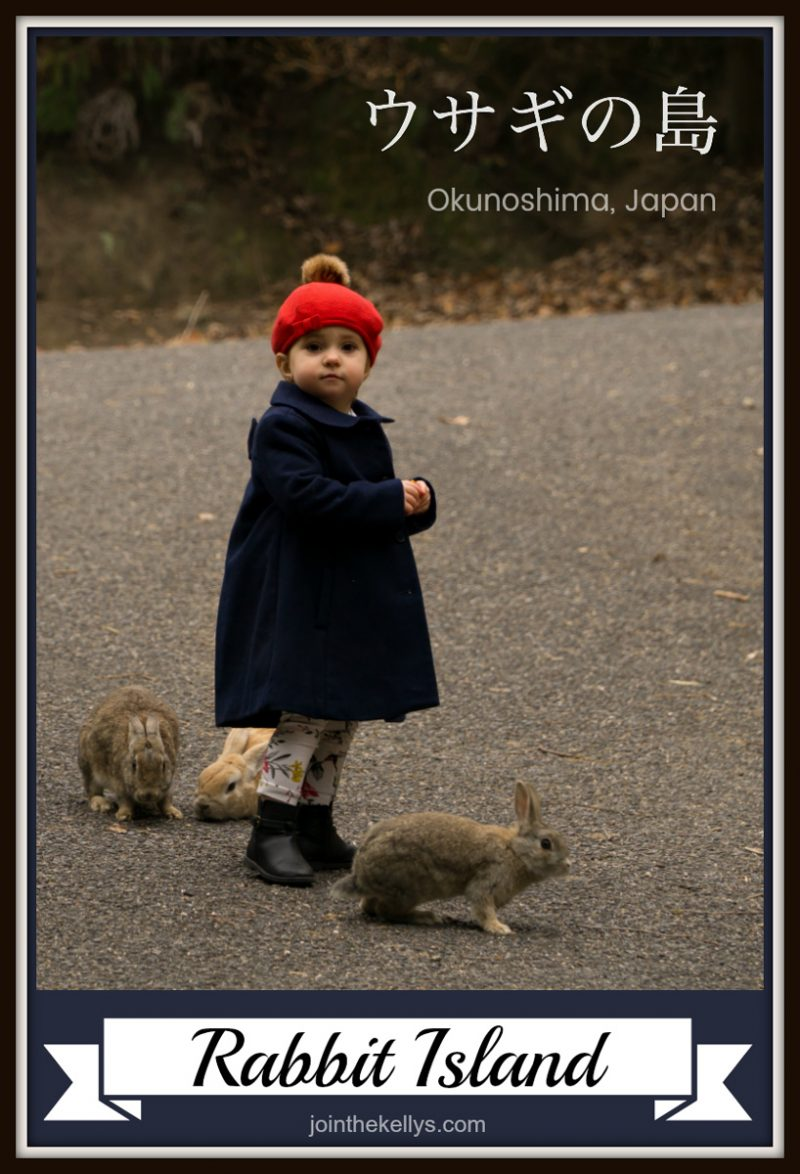 So Kawaii Japan Is Known For The Many Islands Or Areas That Are Densely Populated By Kawaii Cute Animals There Is Zao Fox Village Okunoshima Or Rabbit